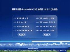 新萝卜家园Ghost Win10 (X32) 优化装机版v2016.12月(自动激活)