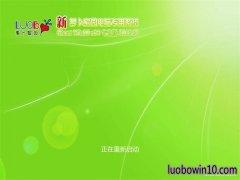 新萝卜家园Ghost Win10 x64 特别专业版 v2019.05(永久激活)